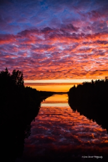Sunrise over the Moose River