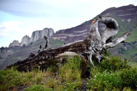Scarp's Ridge in Colorado